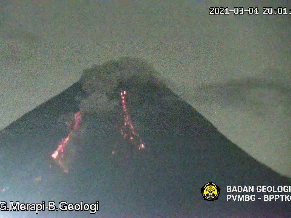 Gunung Merapi Erupsi Malam Ini, Luncurkan Awan Panas 1,3 Km