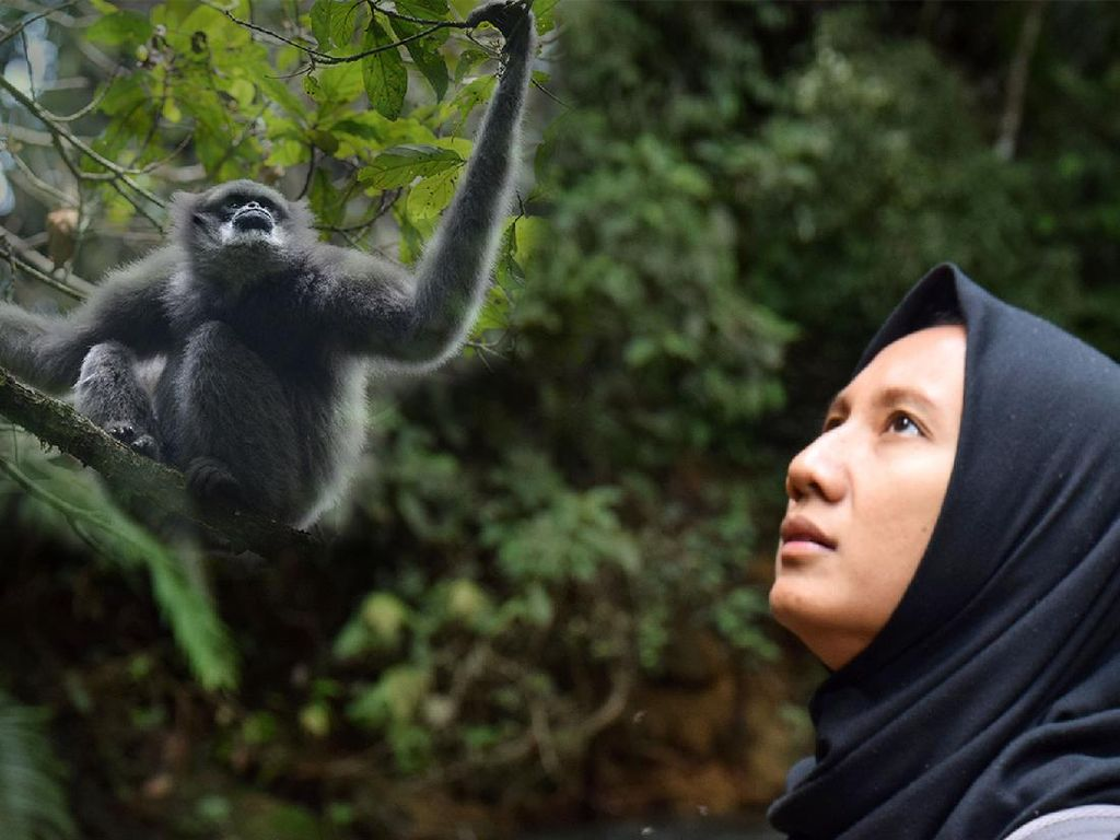 Potret Ayu Berjuang Selamatkan Keberadaan Owa Jawa