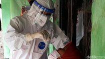 Kemenkes Umumkan 4 Kasus Baru Covid-19 Varian B117 di Indonesia