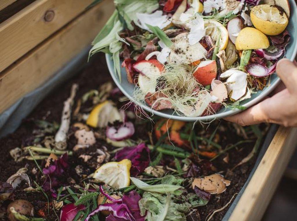 Tiap Rumah Tangga di Dunia Buang 74 Kg Makanan Setahun