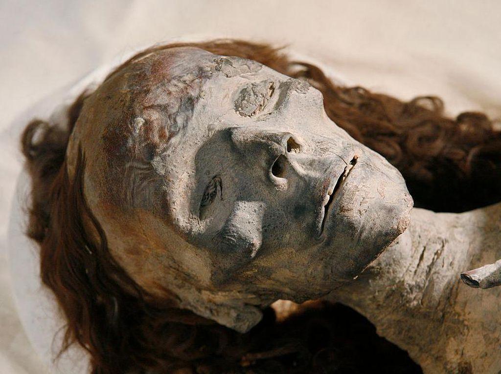 Foto-foto Penampakan Mumi Kerajaan Mesir Kuno