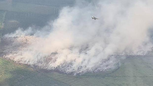 Pesawat tempur TNI AU F-16 ikut memantau karhutla dalam latihan tempur dan patroli rutin. Titik karhutla ditemukan di perbatasan Kabupaten Bengkalis dan Siak (dok TNI AU)