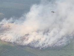 Buru Pembakar Hutan, Area Rawan Karhutla Akan Dipasang CCTV Canggih