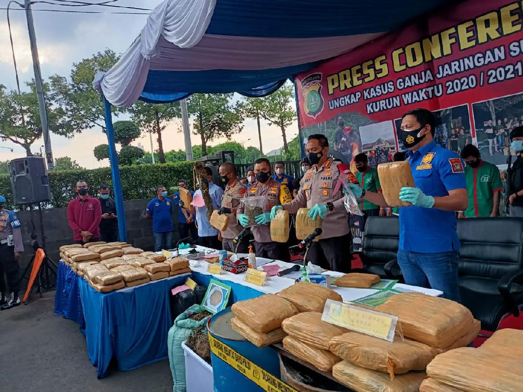 Bongkar Jaringan Narkoba di Sumut, Polres Jakbar Sita 144,5 Ton Ganja