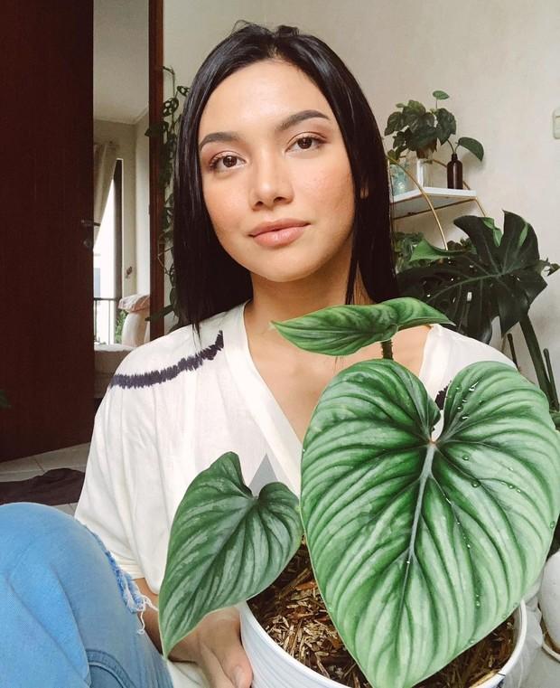 Angela Gilsha mengoleksi tanaman hias beraneka ragam/instagram.com/angelagilsha
