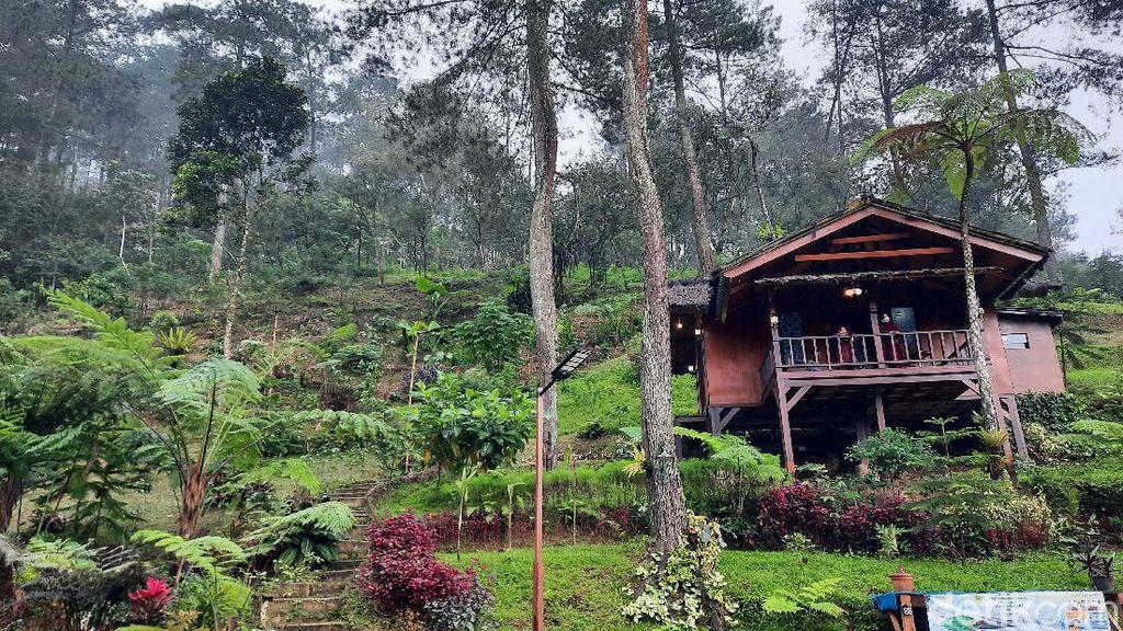 Potret Desa Wisata Batulayang di Bogor nan Memesona