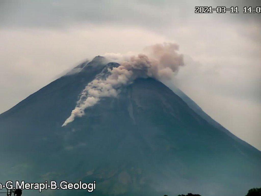 Gunung Merapi Kembali Semburkan Awan Panas Pagi Ini