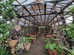 Kafe Ubi: Cicip Bekal ala Petani di Tengah Perdesaan