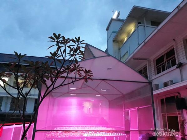 Kebun hidroponik rooftop disinari lampu UV di malam hari