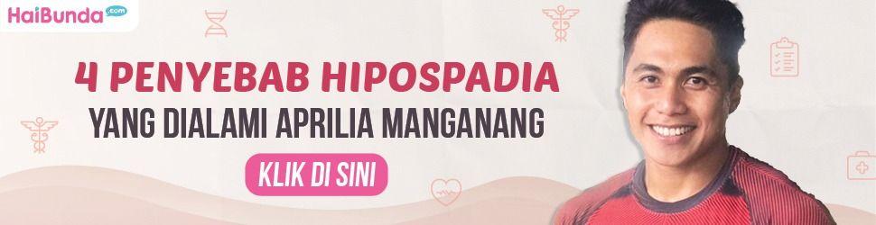 Banner Aprilia Manganang