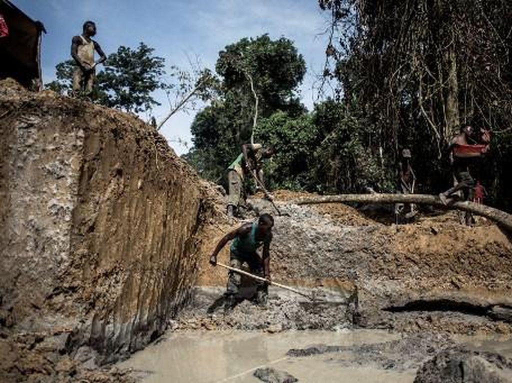 Gunung Emas Kongo bakal Jadi Sumber Petaka atau Bahagia Warganya?