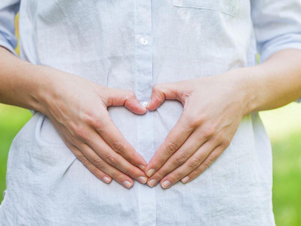 Diet Fertilitas, Pola Makan Sehat untuk Wanita yang Ingin Segera Hamil