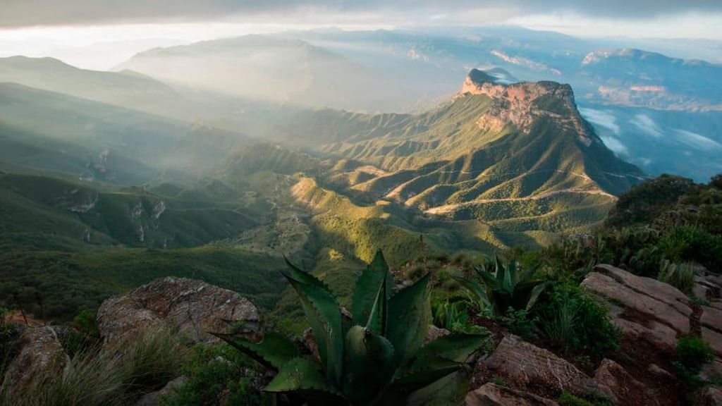 Alam Liar Ini Diselamatkan Pria Kota yang Rindu Pegunungan Terpencil