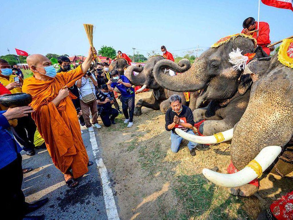 Hari Gajah Nasional di Thailand, Biksunya Babtis Gajah