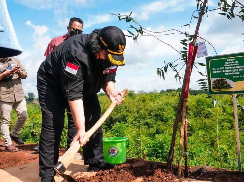KLHK Tanam 150 Batang Pohon di Persemaian Modern Rumpin, Bogor