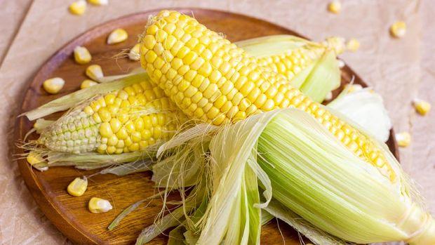ilustrasi rambut jagung