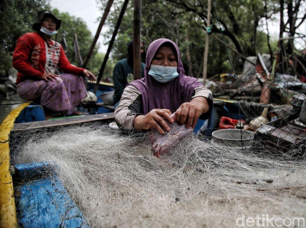 Potensi Perikanan, Konsumsi Ikan, dan Kesejahteraan Nelayan