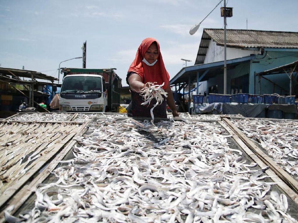 Olahan Ikan Kering Jadi Ladang Bisnis Perempuan Pesisir Demak