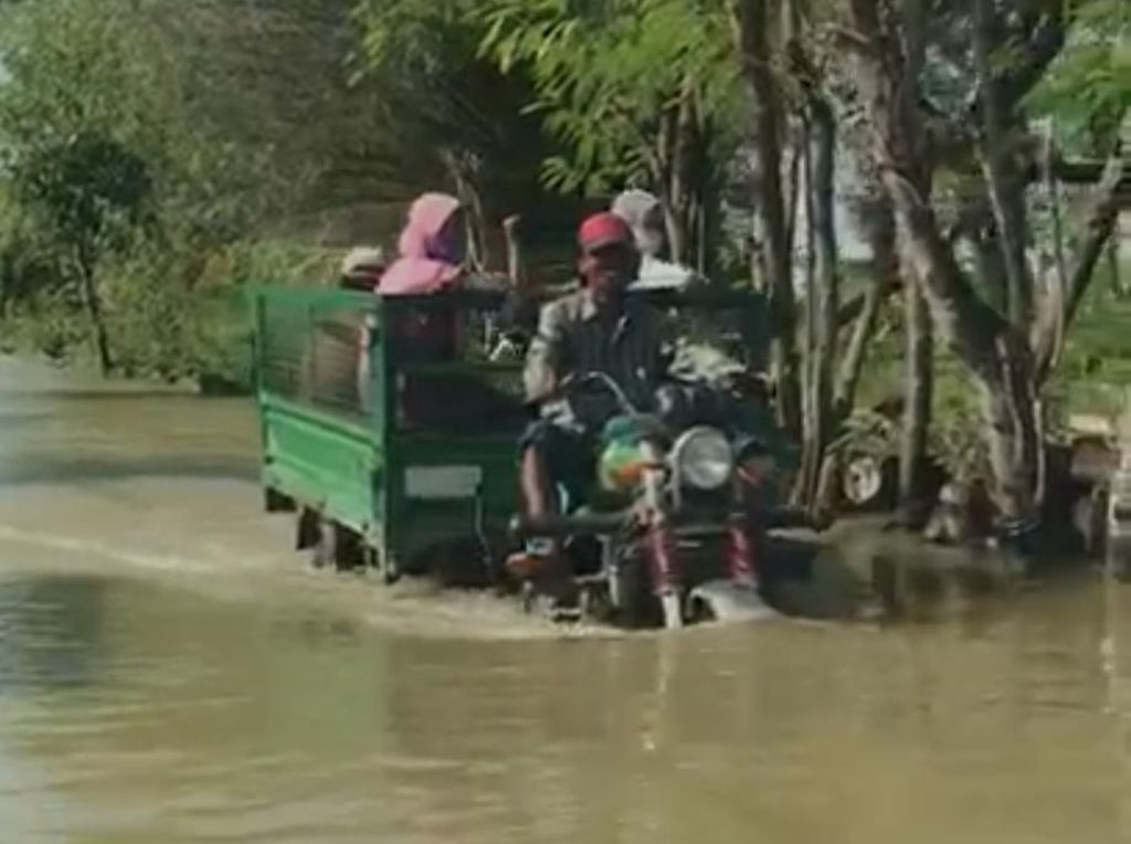 Dua Bulan Terendam Banjir, Warga 49 Desa di 6 Kecamatan Lamongan Hanya Pasrah