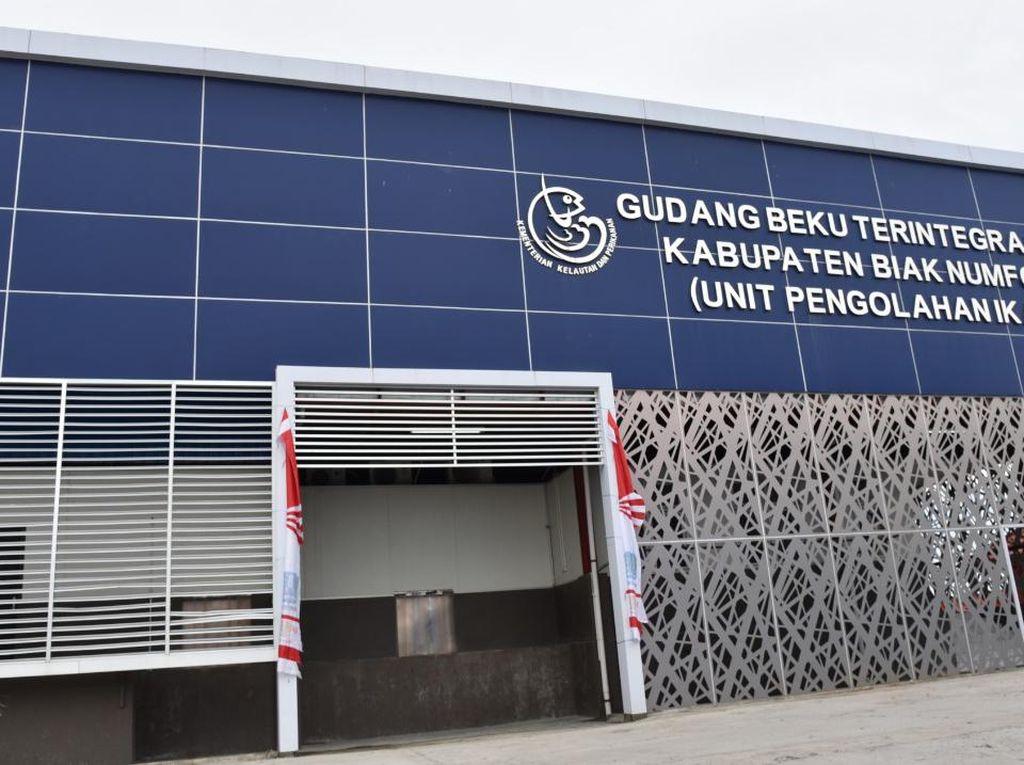 KKP Dorong Biak Numfor Papua Jadi Daerah Pengekspor Ikan