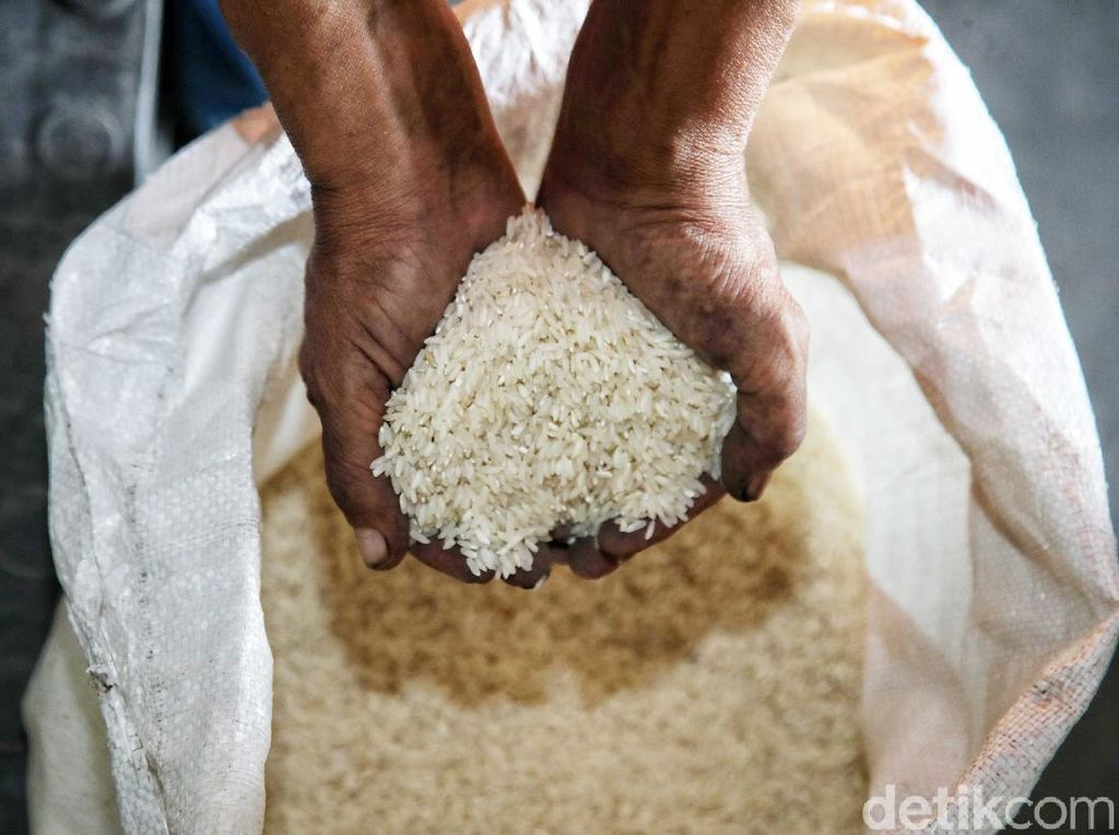Ratusan Ribu Ton Beras Impor Tak Terpakai, Buwas Lapor Jokowi