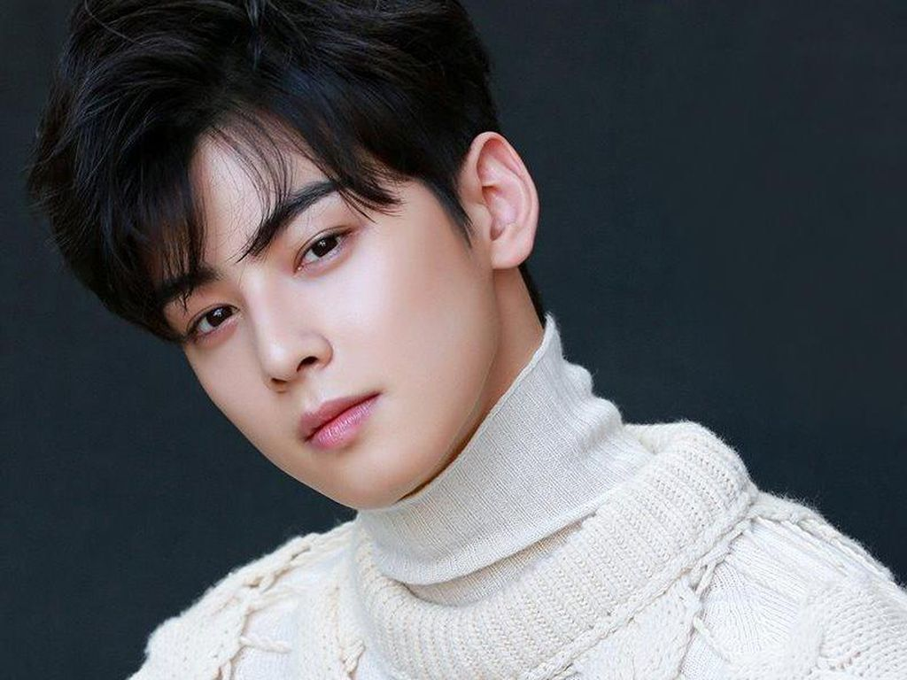 7 Fakta Menarik Cha Eun Woo, Casting di Depan Toilet hingga Bucinin Artis