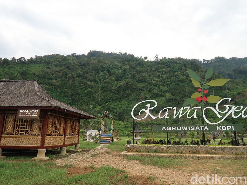 Situ Rawa Gede, Danau Tersembunyi di Bogor yang Cantiknya Bikin Meleleh