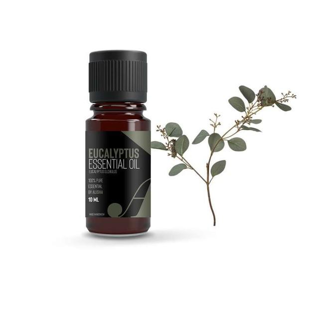 Eucalyptus menyeimbangkan kelebihan sebum pada kulit dan mencegah komedo, kamu bisa menambahkan minyak esensial ini ke pembersih atau pelembap