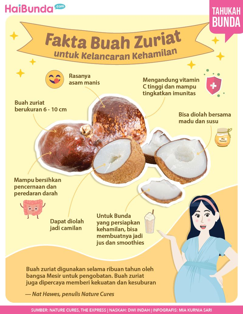 Infografis buah zuriat