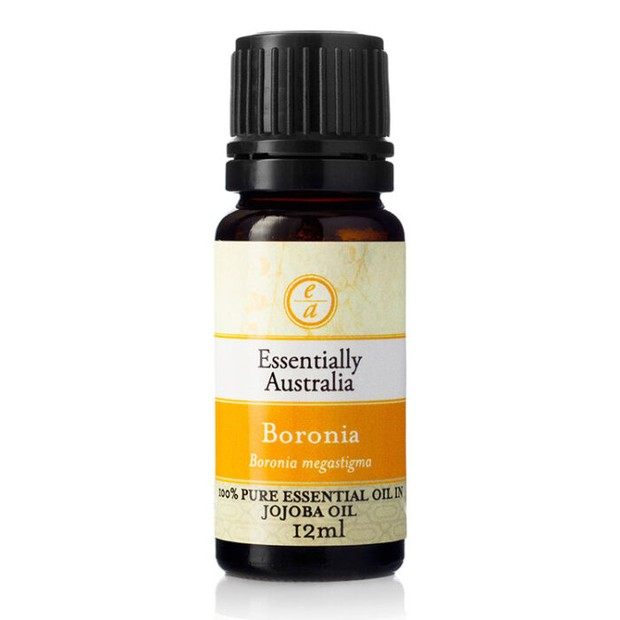 Minyak jojoba membantu menyeimbangkan semuanya, terlihat, terasa dan bekerja seperti minyak normal di kulit.