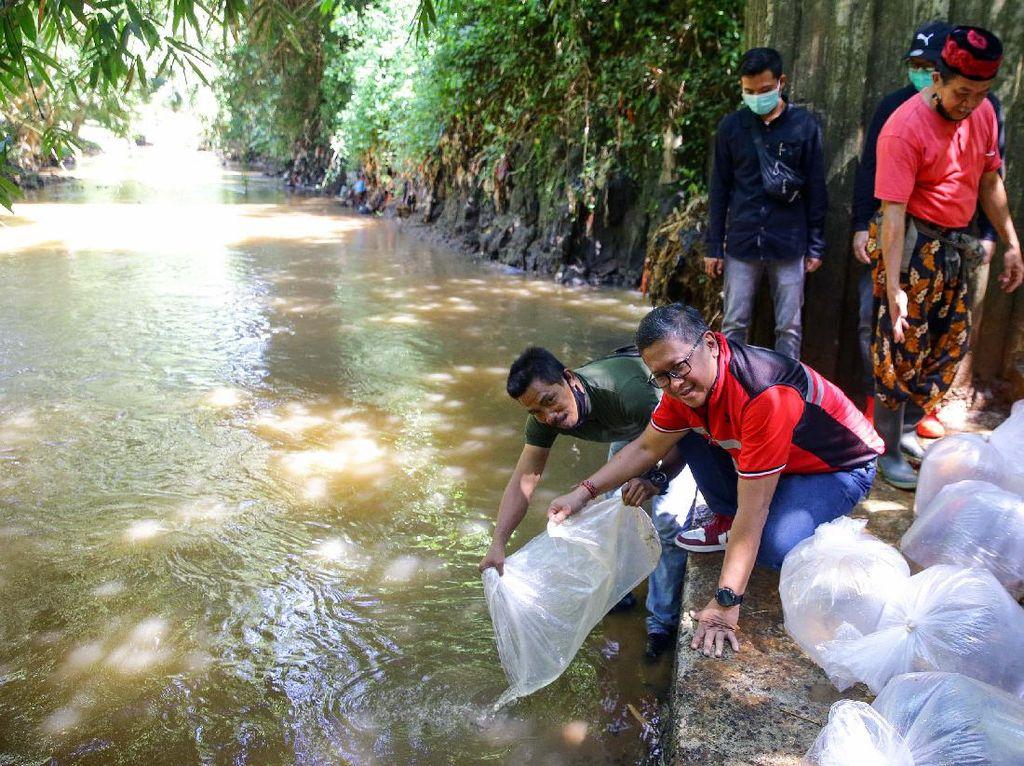Aksi Tebar Ikan di Kali Pesanggrahan
