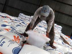 Jokowi: Pemerintah Sebetulnya Tidak Suka Impor Beras, tapi...