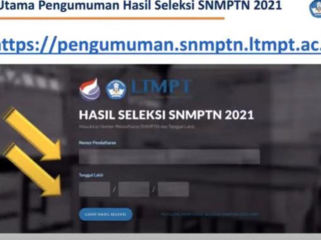 Lolos SNMPTN 2021, Ini Langkah Selanjutnya Jangan Lupa Ya