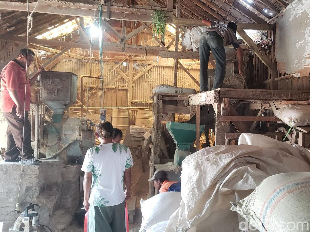 Harga Anjlok, Petani dan Pedagang Beras di Probolinggo Merana