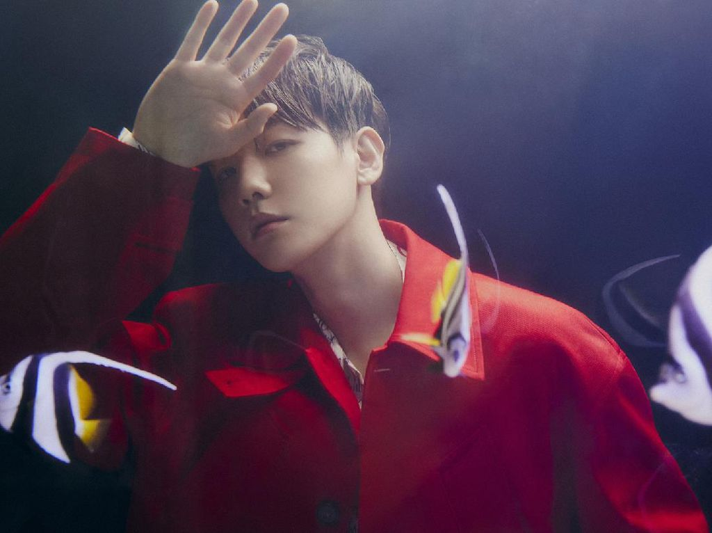 Serigala hingga Nyamuk, 7 Judul Lagu K-Pop Ini Pakai Nama Binatang