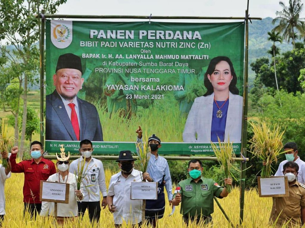Ketua DPD Sebut Masalah RI Bukan Kekurangan Beras, tapi...