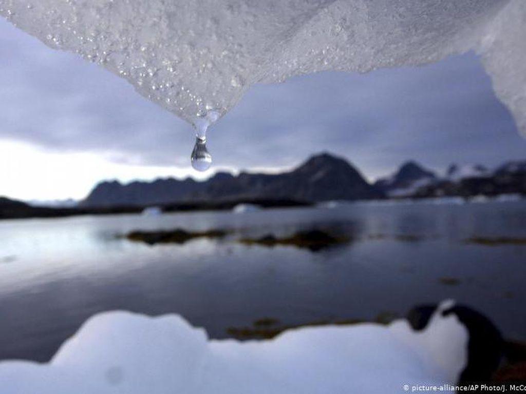 Lapisan Gletser Lumer Makin Cepat, Apa Dampaknya Bagi Manusia?