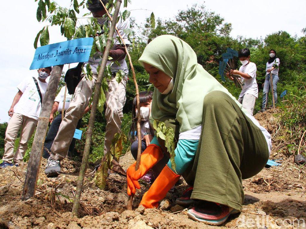 Melihat Aksi Tanam Sejuta Pohon di Lahan Longsor