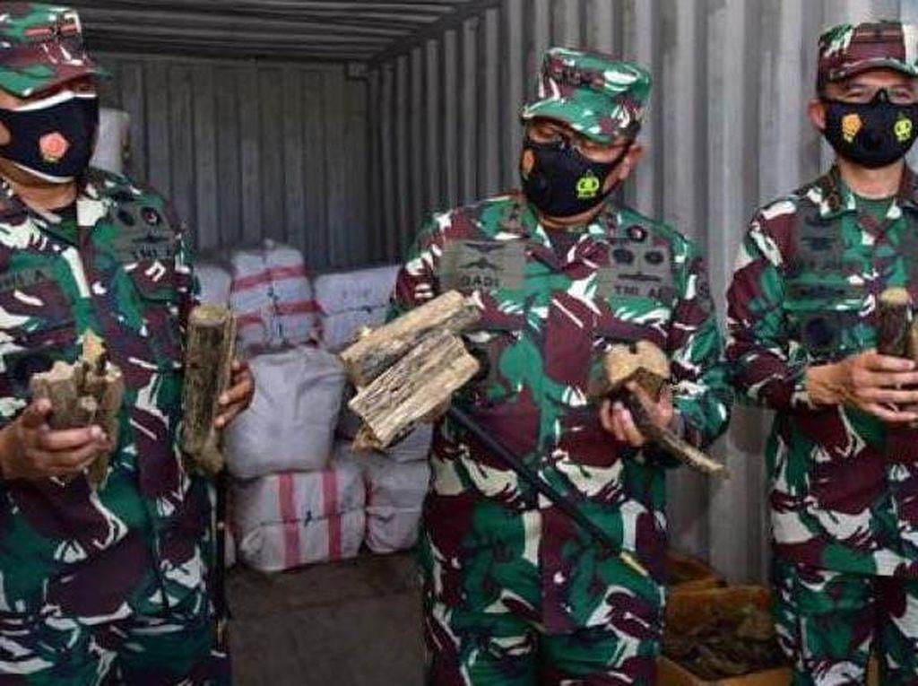 TNI AL Tangkap Kapal Muatan Kayu Gaharu dan Cokelat Ilegal di Seram