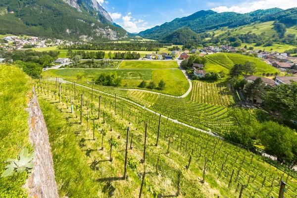 Lebih kecil dari Jakarta Timur, Liechtenstein bisa dijelajahi dalam 1 hari. (Getty Images)
