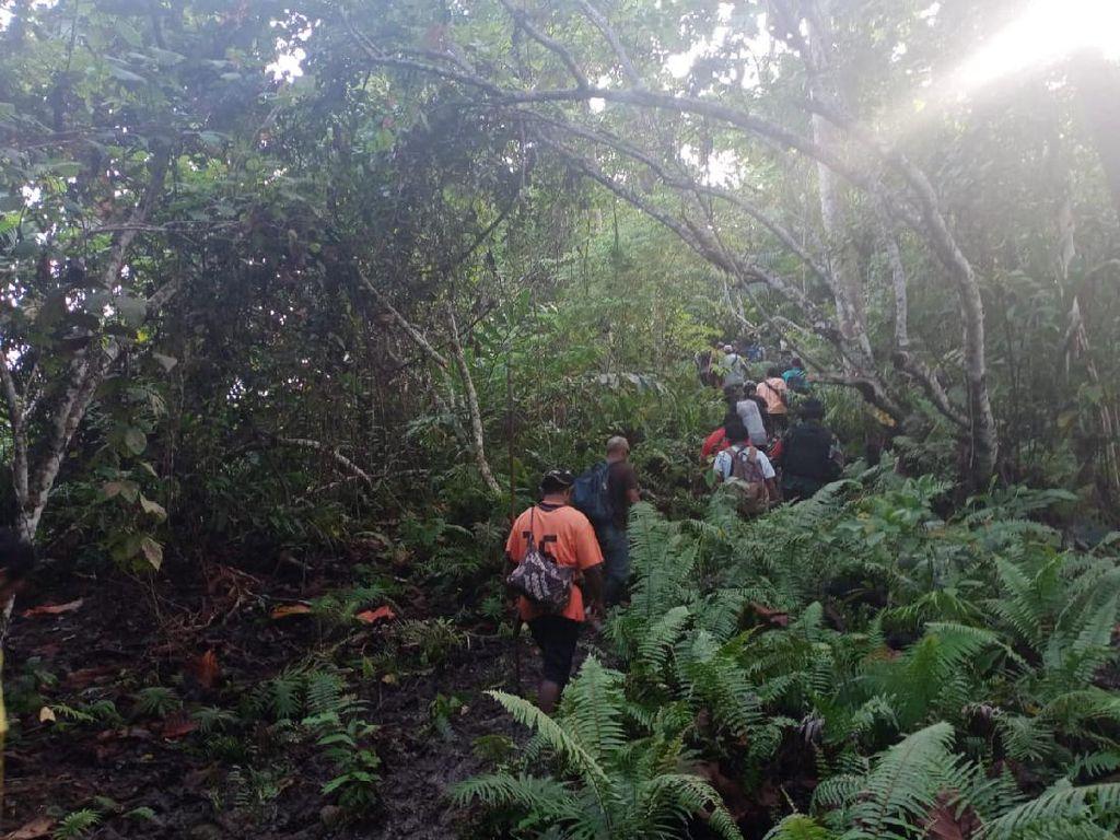 Begini Beratnya Evakuasi 3 Orang di Hutan Malut Diduga Dibunuh Suku Togutil