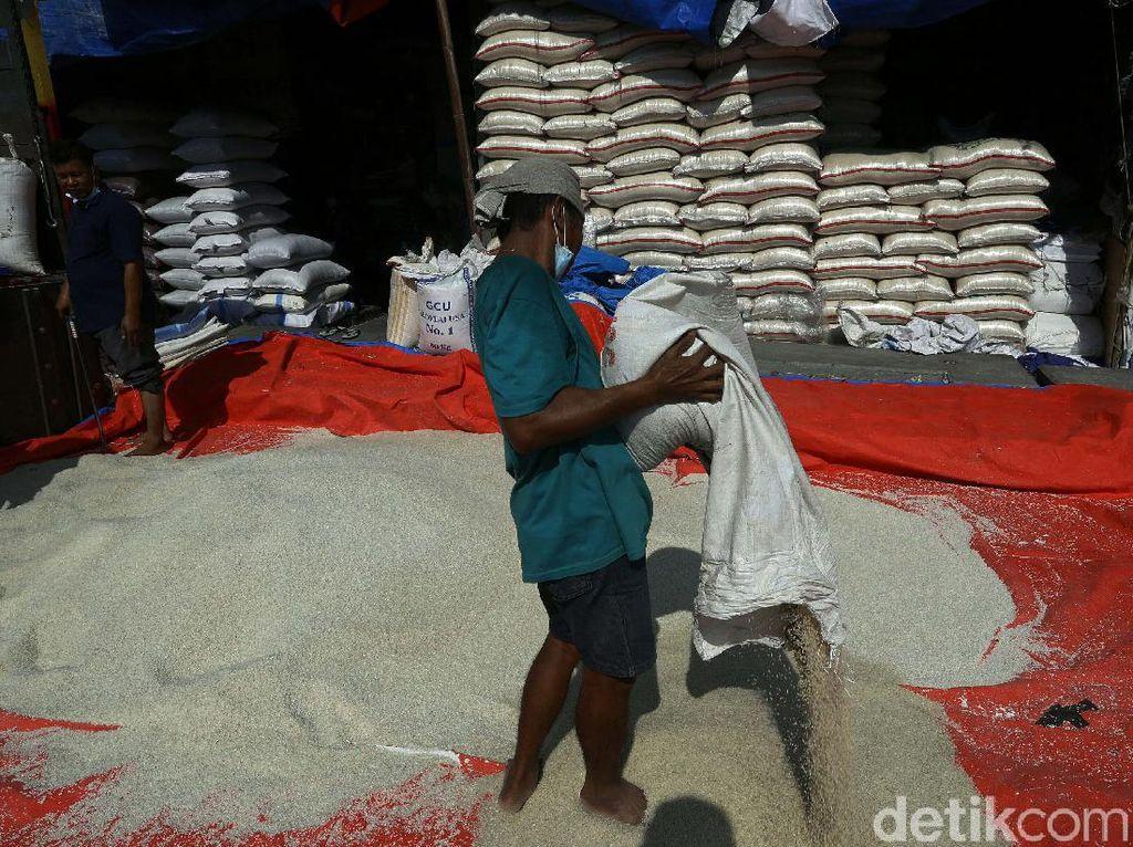 Napak Tilas: Wabah Pes dan Pertama Kali Indonesia Impor Beras