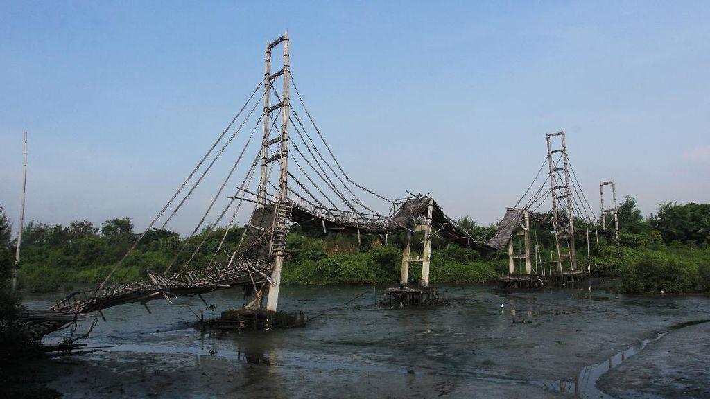 Jembatan Bambu di Ekowisata Mangrove Wonorejo Rusak