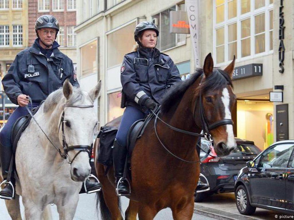 Polandia Rencana Beri Uang Pensiun untuk Anjing dan Kuda Patroli