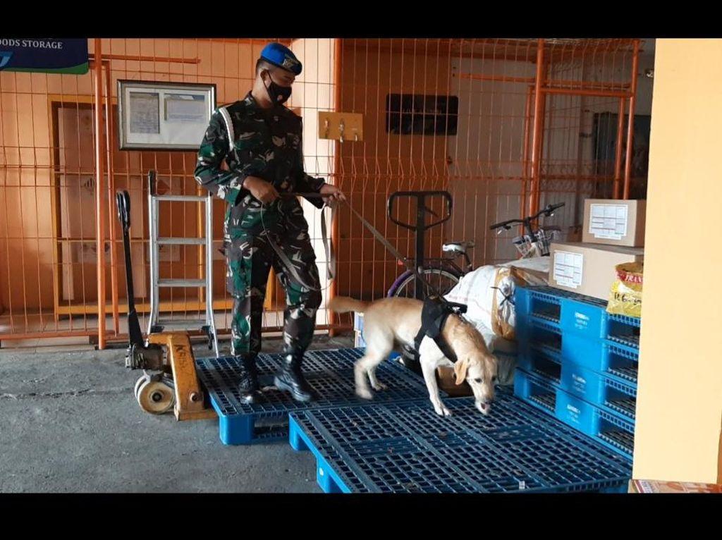 Pascabom Makassar, Tim Brigadir Anjing Dikerahkan Cek Bandara Solo