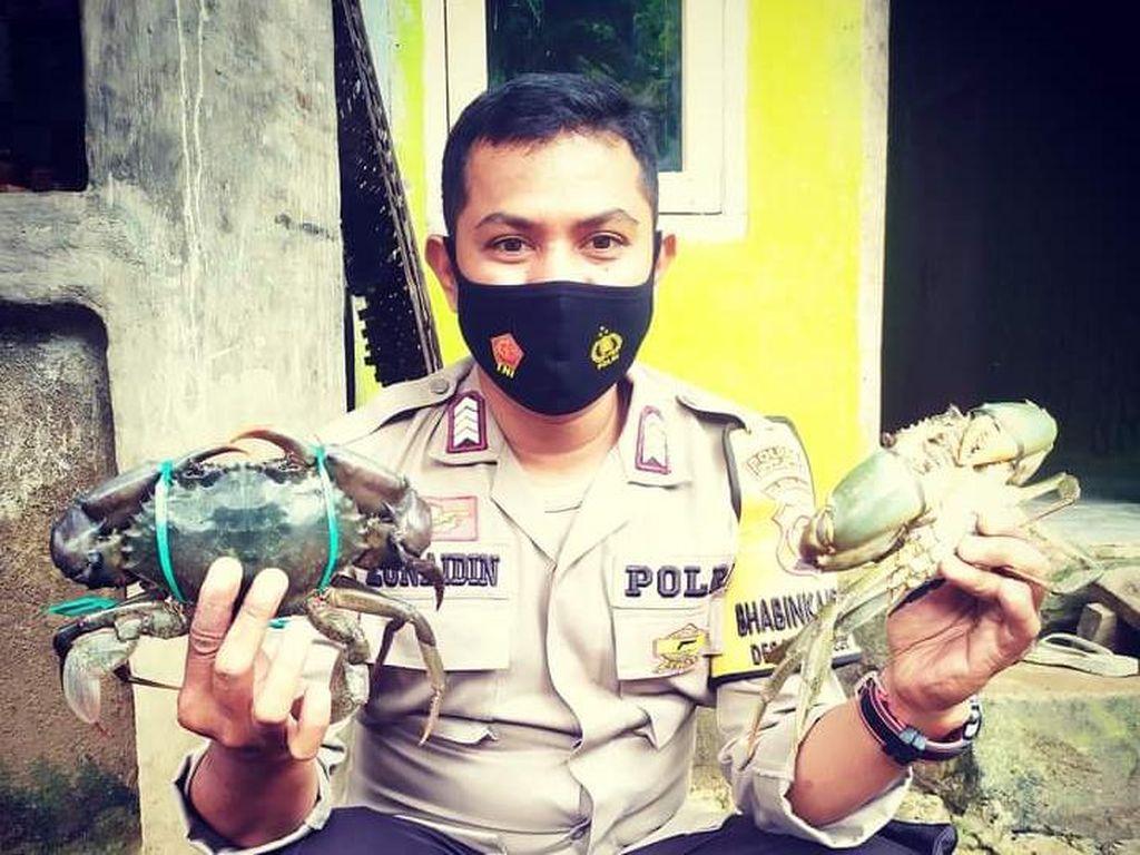 Top! Anggota Polisi di NTB Jualan Kepiting buat Bantu Ekonomi Warga