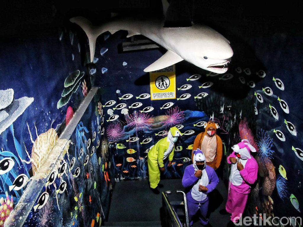 Ada Aksi Edukasi Selamatkan Laut di Sea World Ancol