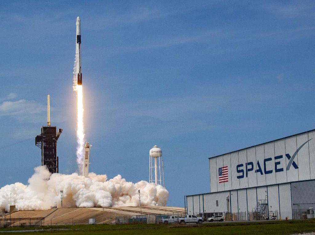 SpaceX Kirim Semut-Es Krim ke Luar Angkasa, Biar Apa?