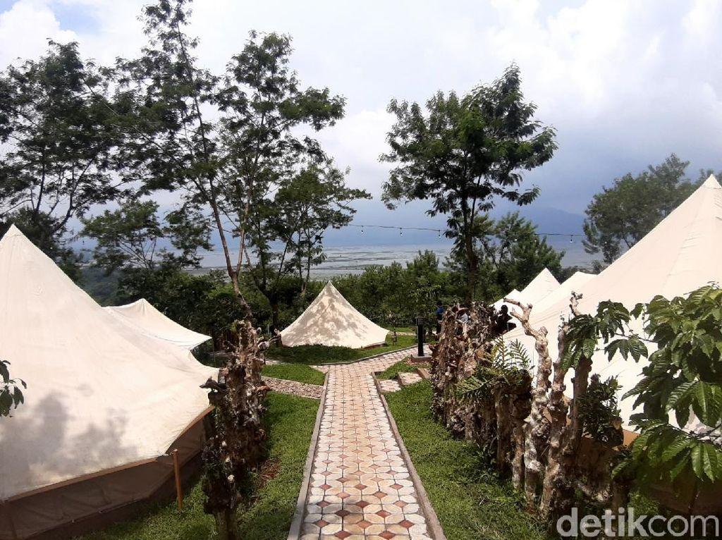 Kampoeng Kopi Banaran di Semarang Punya Coffee Camp, Apa Itu?