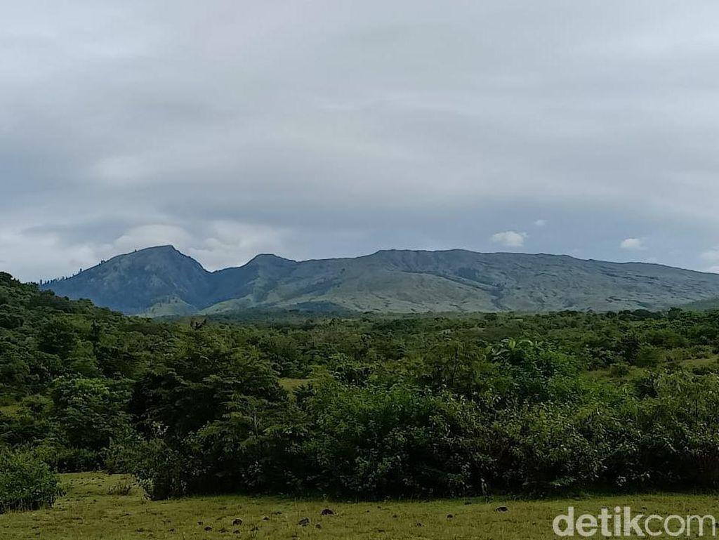 Pendakian Gunung Tambora Dibuka, Perhatikan Kuota dan Syaratnya